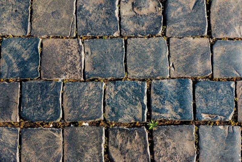 老方形的街道石头 免版税库存照片