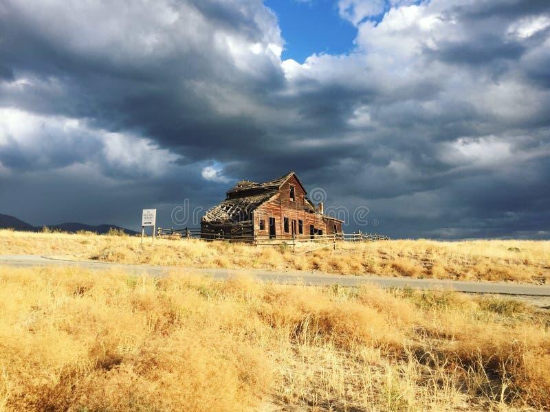 老木房子和金黄草,奥利佛史东,不列颠哥伦比亚省,加拿大 免版税库存照片