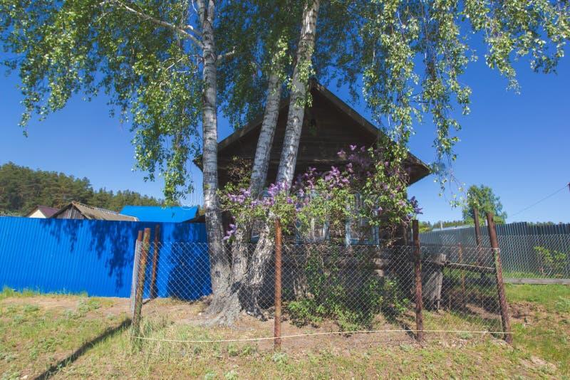 老木房子在夏天俄国人村庄 图库摄影