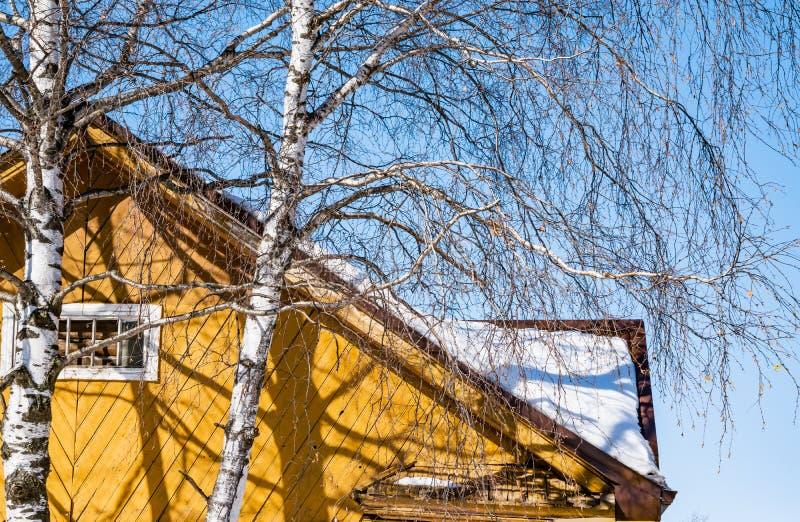 老木村庄房子屋顶雪的在桦树附近的天空背景, 免版税图库摄影