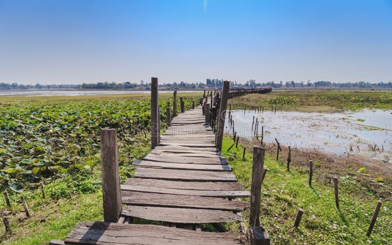 老木桥在天空蔚蓝下的夏天 免版税库存照片