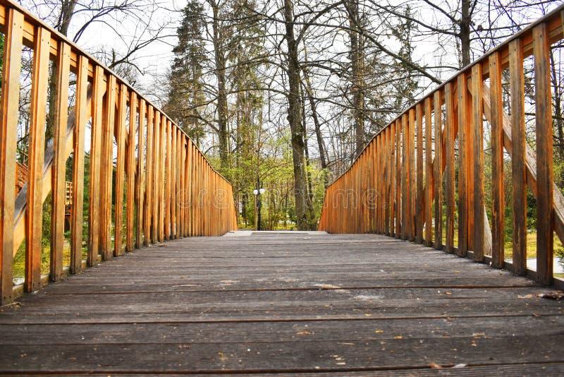老木桥在深森林,自然葡萄酒背景里 库存图片