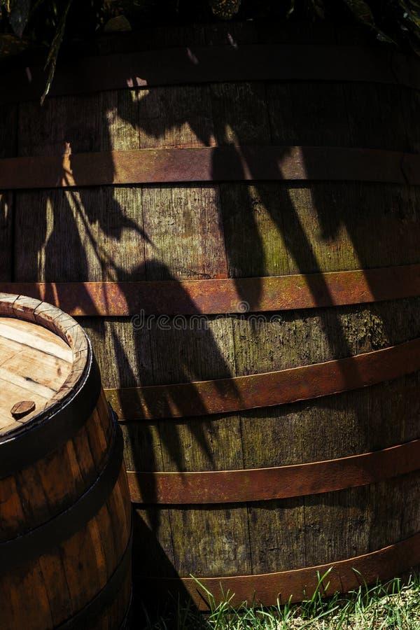 老木桶在与更小的桶的树树荫下在边 免版税图库摄影