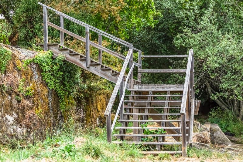老木楼梯看法在森林的 免版税库存图片
