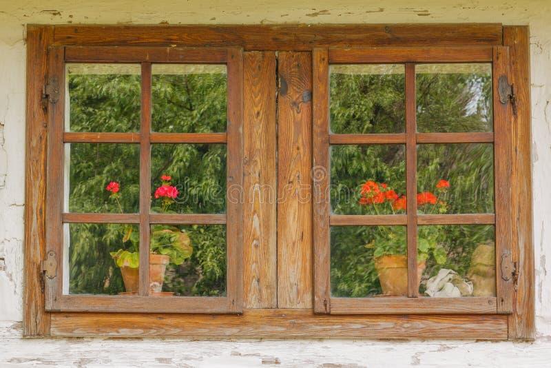 老木窗口特写镜头与花的 库存图片