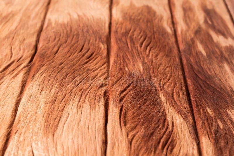 老木纹理是橙色颜色 免版税图库摄影
