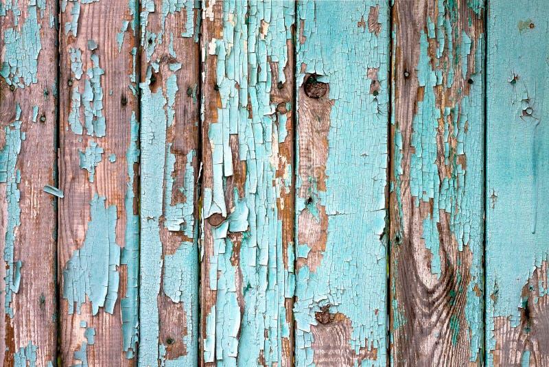 老木被绘的浅兰的土气篱芭,油漆削皮背景 库存图片