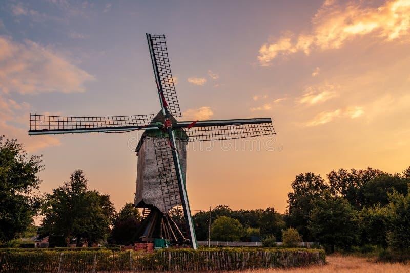 老木风车在阿尔斯霍特 库存照片