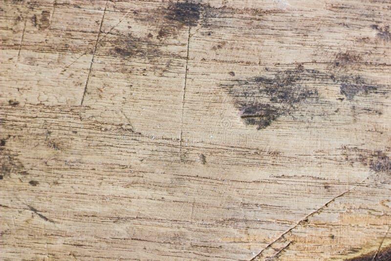 老柚木树木头 库存图片