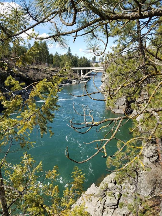 老桥梁在河和通过树 免版税图库摄影