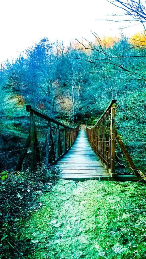 老桥梁秋天2018年弗拉涅塞尔维亚 图库摄影