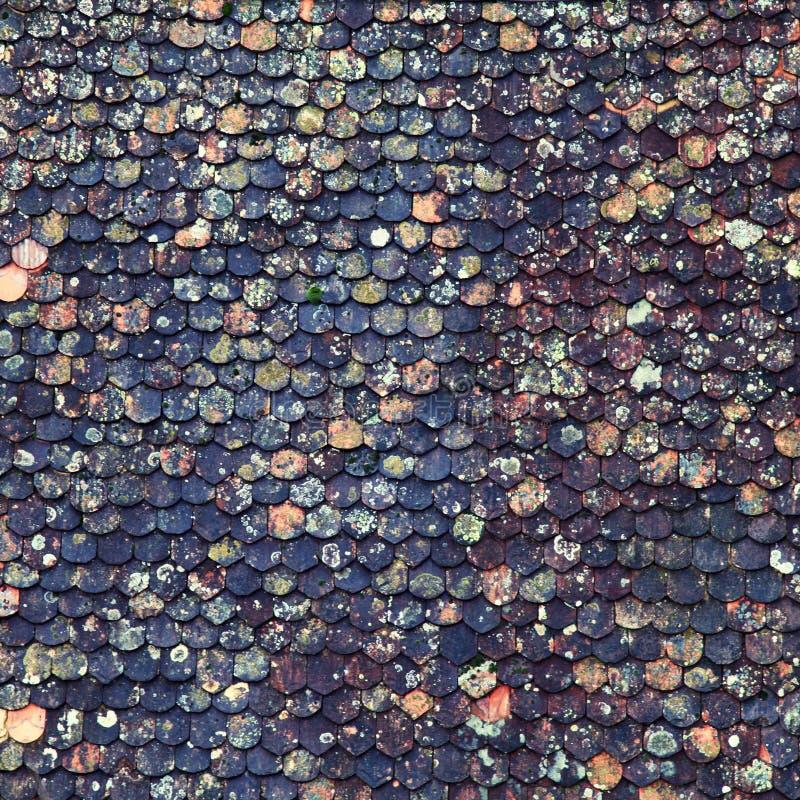 老棕色瓦屋顶背景 免版税库存图片