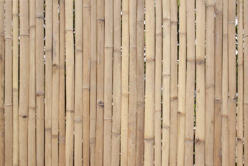 老棕色竹子为做篱芭、小屋或者墙壁家 免版税库存照片