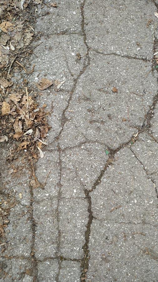 老沥青的片段与新鲜的草和叶子的 r 库存图片