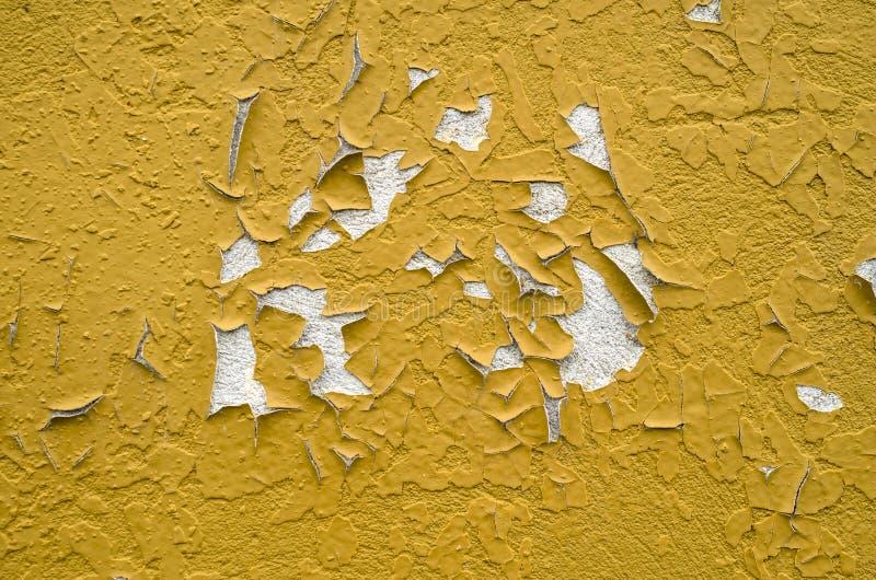 老油漆皱皮被绘的墙壁 库存图片