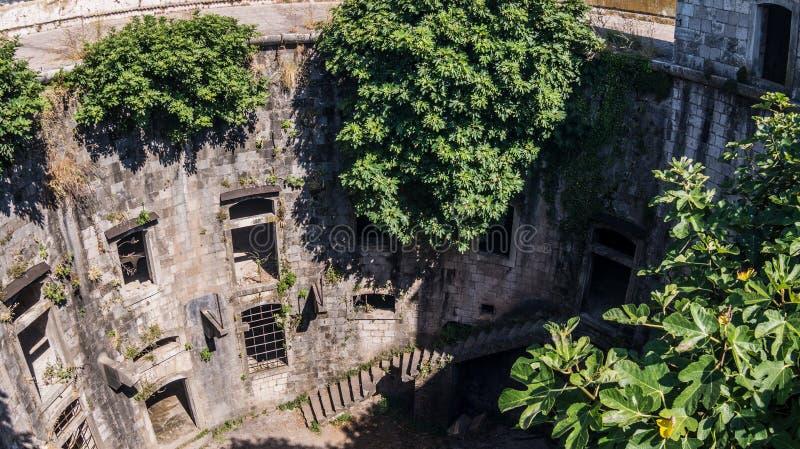 老海堡垒的墙壁与台阶和灌木的 免版税图库摄影