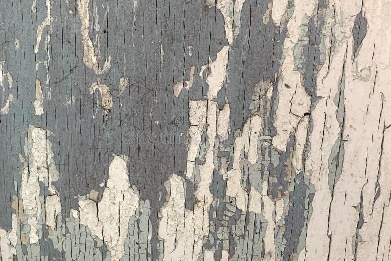 老深灰木墙壁纹理有裂化的白色油漆的 免版税库存照片