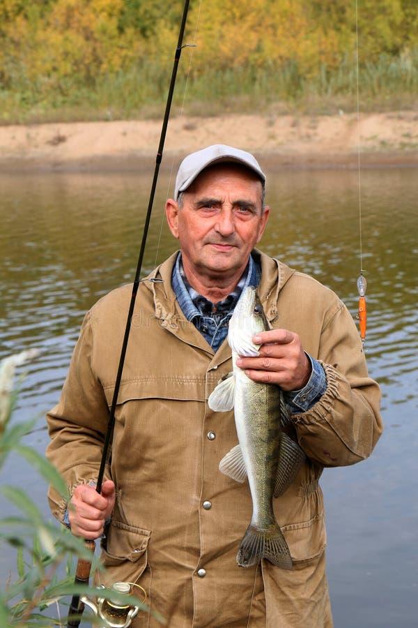 老渔夫和他的抓住- zander 免版税库存照片