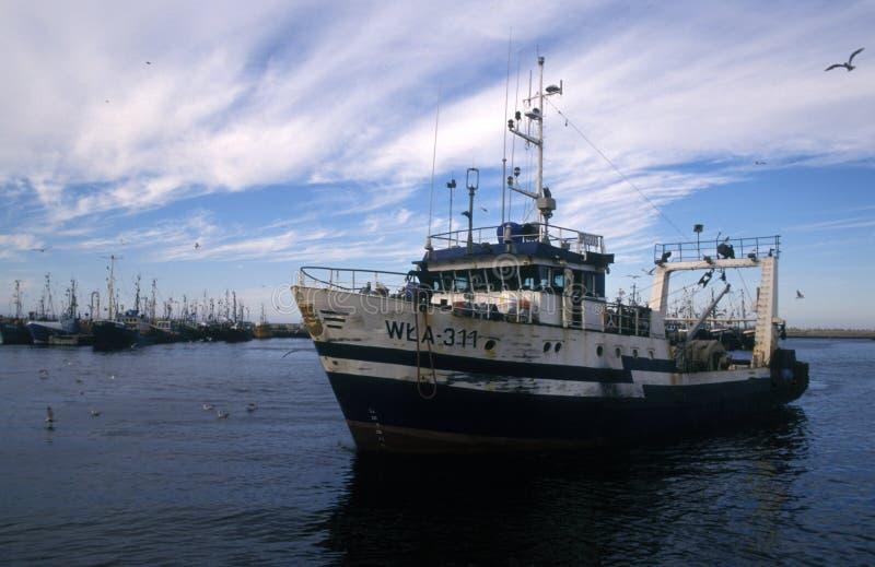老渔船停泊在港口 库存照片