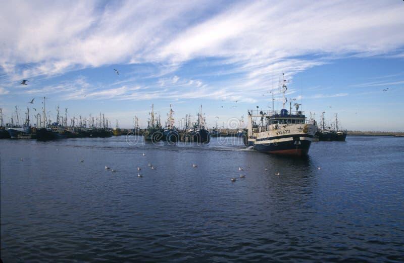 老渔船停泊在港口 免版税图库摄影
