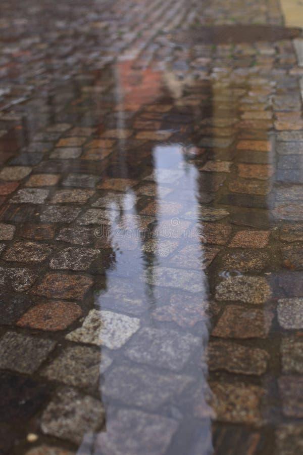 老湿鹅卵石在雨中 免版税图库摄影