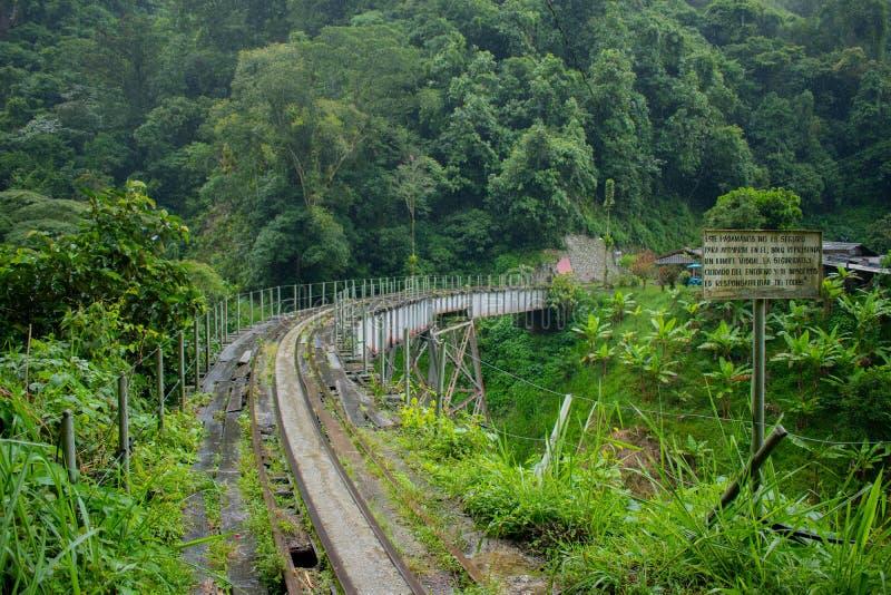 老火车轨道在哥伦比亚的密林 免版税库存图片
