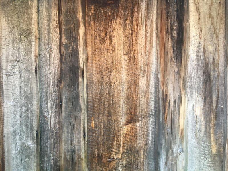 老灰色木篱芭背景 免版税库存照片