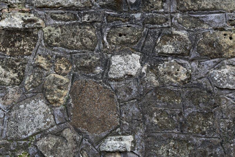 老灰色石墙的片段由与绿色青苔的不同的形式和大小岩石做成对此 库存照片