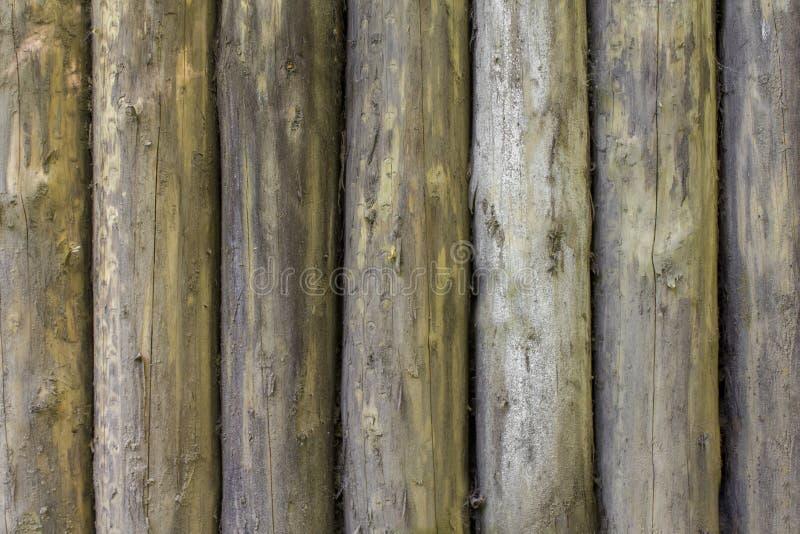 老灰色黄色墙壁篱芭由大树干做成 r r 免版税库存图片