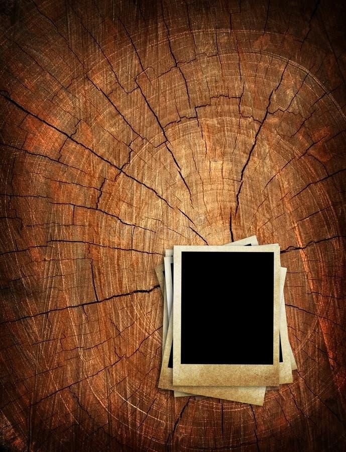 老照片树桩结构树 向量例证