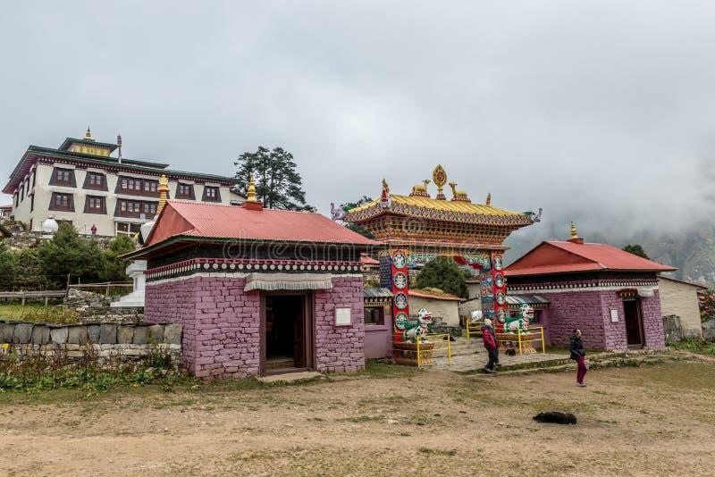 老牛参观在mt途中的Stupa修道院  基本阵营北部珠穆琅玛的表面 免版税图库摄影