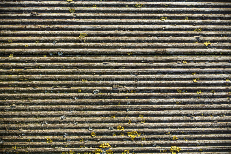 老犁的青苔木质的背景 库存图片