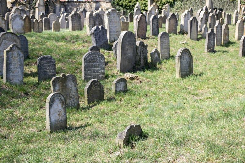 老犹太公墓在Horice镇非常大和保存良好 免版税库存图片