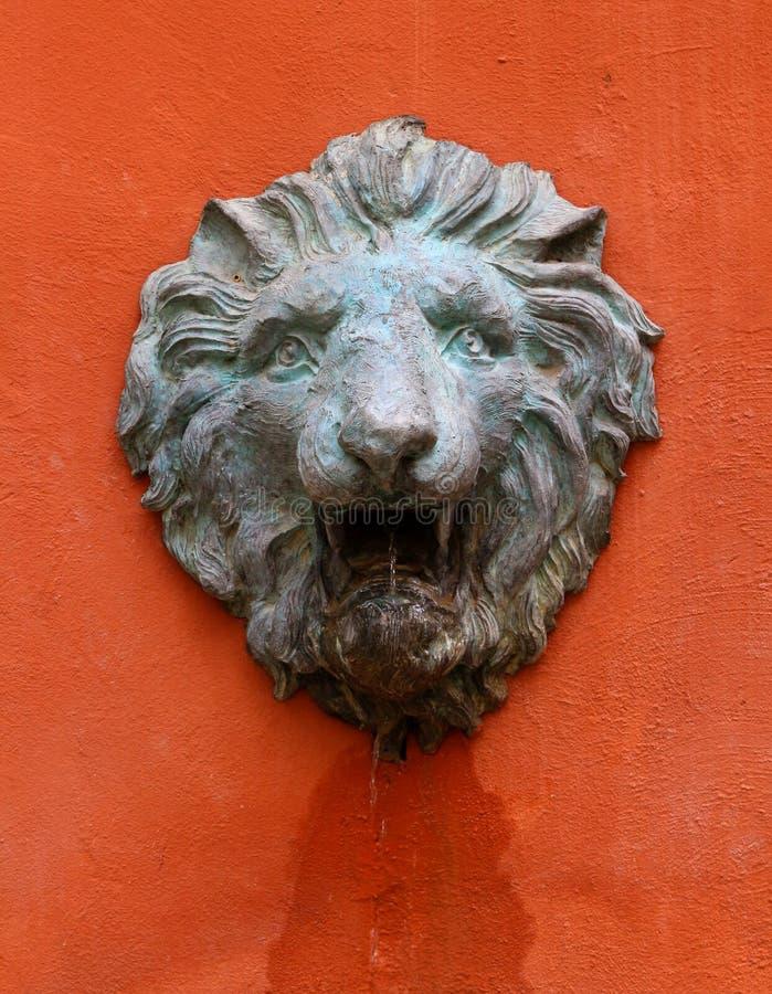 老狮子头石头状态 库存照片