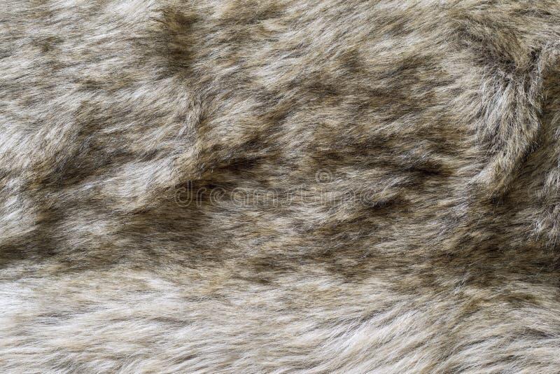 老狼毛皮织品抽象纹理  免版税图库摄影