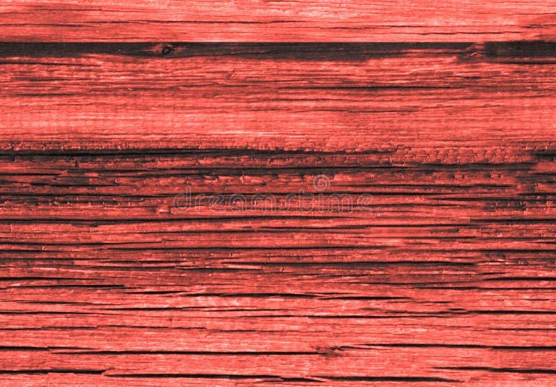 老生存珊瑚红色背景纹理绘了木排行的委员会墙壁 居住的珊瑚颜色背景 ??  免版税库存图片