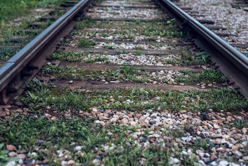 老电车路轨,特写镜头,夏天秋天,在睡眠者草、石渣和石头之间在城市 库存照片