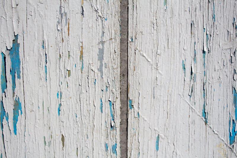 老白色和蓝色木纹理 库存图片