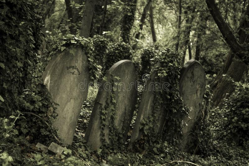 老石坟墓 库存图片