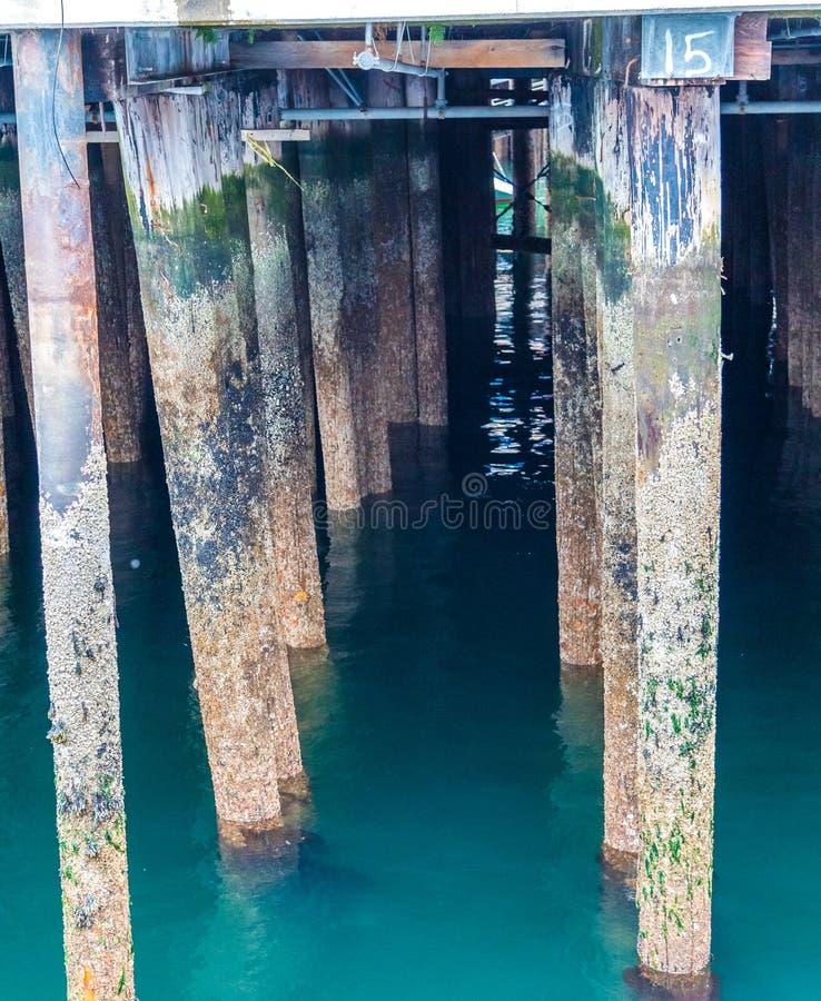 老码头打桩垂直 库存图片