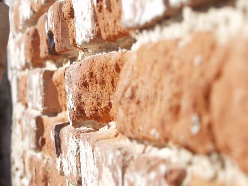 老砖墙在晴天 免版税库存照片