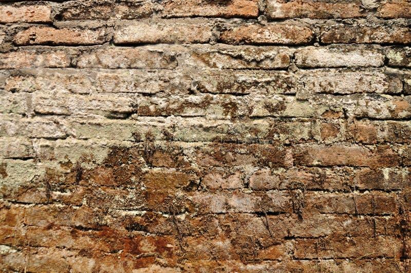 老砖墙纹理难看的东西摘要&背景 库存照片