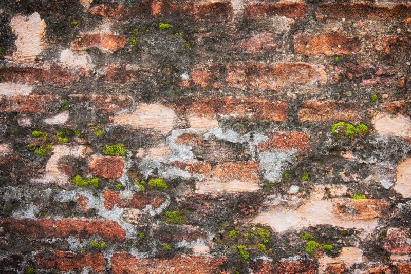 老砖墙难看的东西背景 免版税库存图片