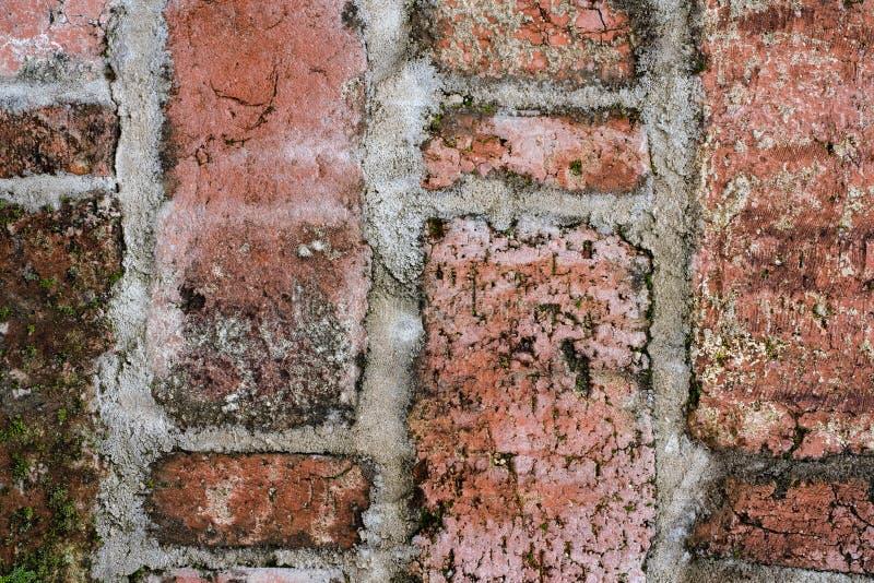 老砖砌葡萄酒纹理在接近的看法的 免版税图库摄影