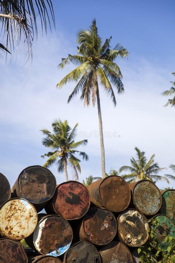 老空的金属桶在热带环境里 免版税库存图片