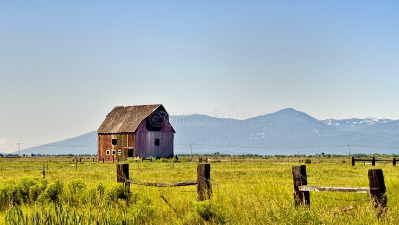 老红色木谷仓,俄勒冈 库存照片