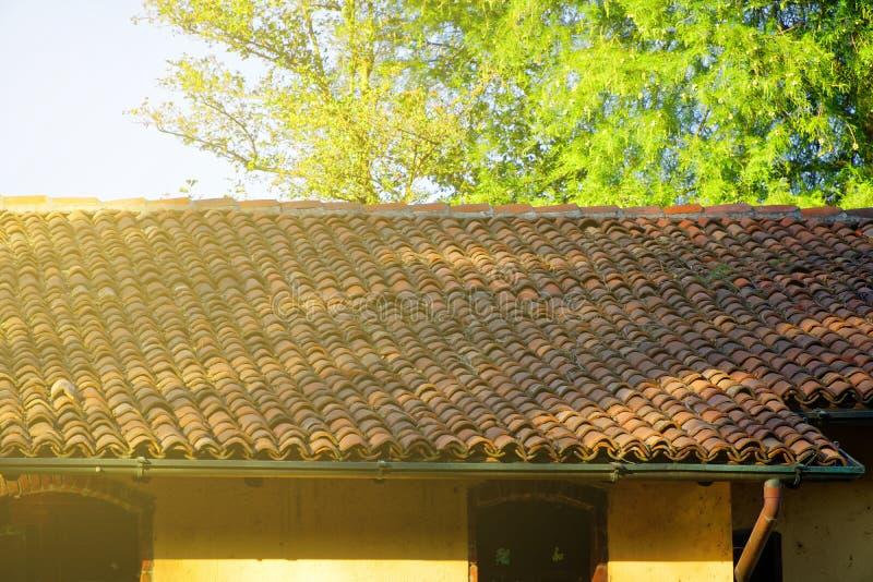 老红色铺磁砖的屋顶、特写镜头和绿色树在背景 免版税库存照片