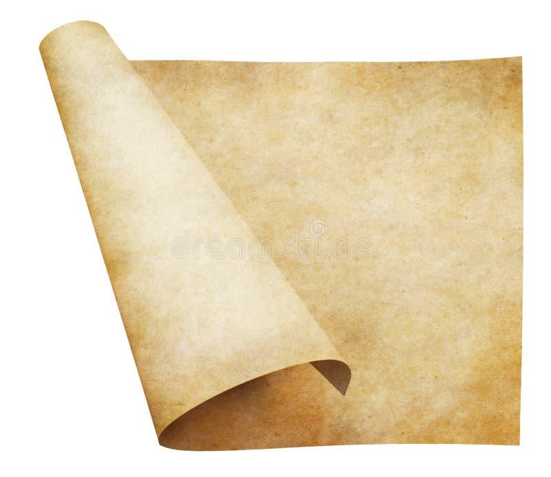 老纸羊皮纸滚动 库存例证