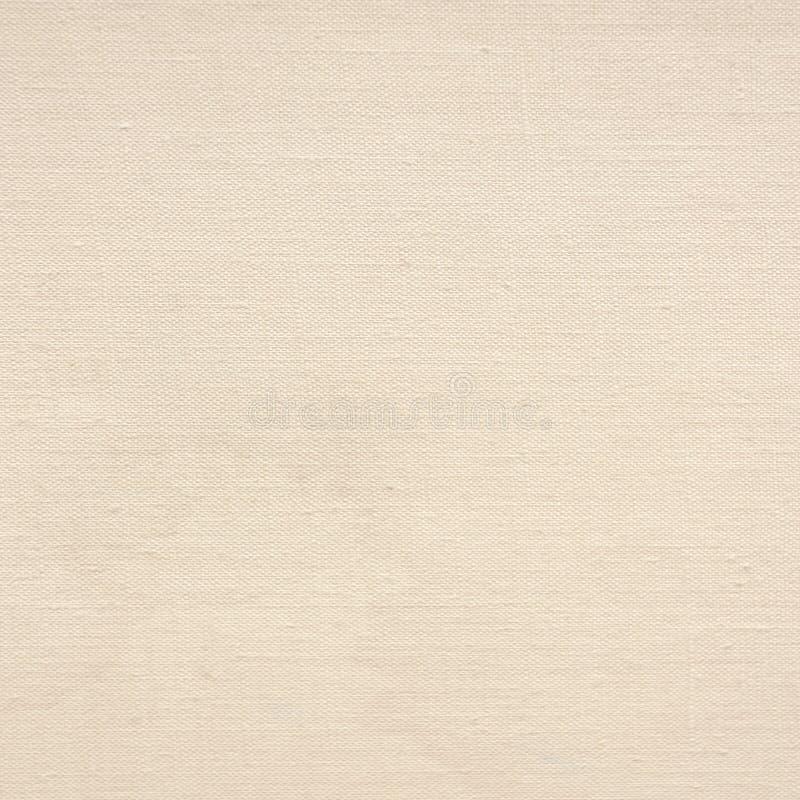 老纸背景帆布纹理精美网格图形 免版税图库摄影