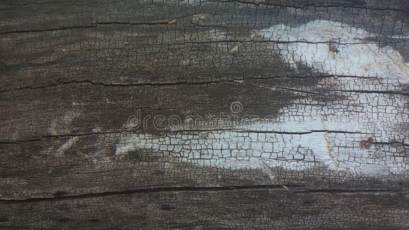 老纹理木头 库存照片
